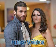 Pajaro soñador capítulo 53 - Univision | Miranovelas.com