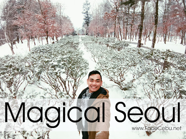 Magical Seoul Cover taken by Oppo F3 Smartphone