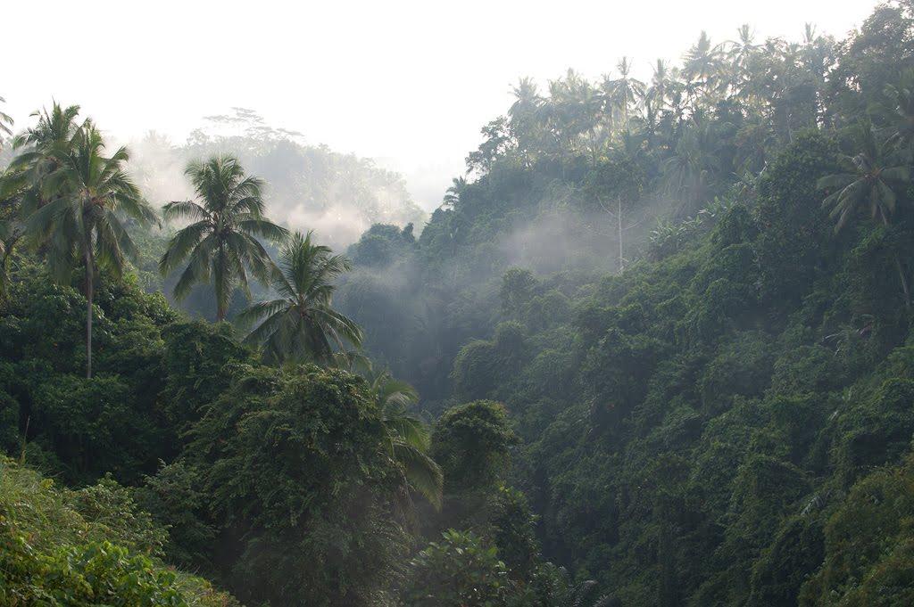 qcpxxlwwxnsr1plqxjge Is Bali In Indonesia