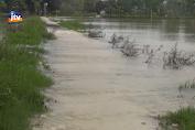 Petani Terdampak Banjir Lamongan Diusulkan Dapat Asuransi
