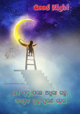 Odia Good Night Status । Share odia goodnight status with your friends and loved one ଶୁଭ ରାତ୍ରି