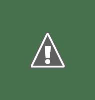 Промывка от накипи кофемашины Delonghi Magnifica