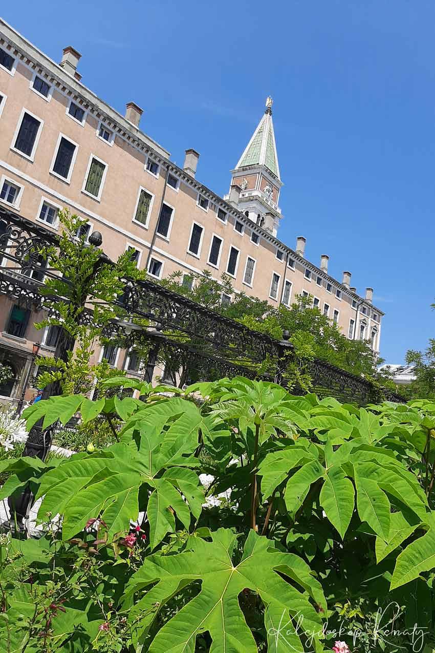 Ogrody Królewskie w Wenecji – niezwykłe miejsce, które trzeba zobaczyć