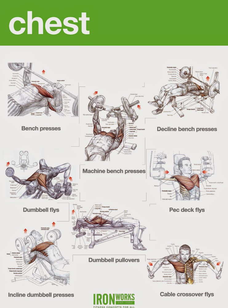 mass building chest workout