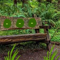 Bigescapegames Wooden Bench Forest Escape