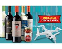 Giordano Vini Gusta e Vola : 10 vini + 4 prodotti alimentari + Drone W10 a soli € 49,90