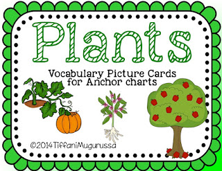 Plants vocabulary cards for anchor charts and sorting