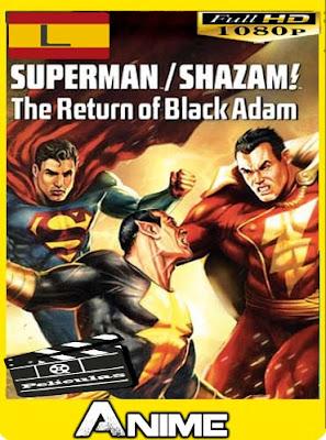 Superman/Shazam!: El Regreso de Black Adam (2010) HD [1080P] latino [GoogleDrive-Mega]nestorHD