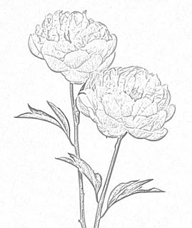 flower coloring pages holiday.filminspector.com