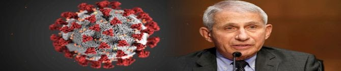 Fauci Described Indian Research On 'Man-Made Covid' As Outlandish