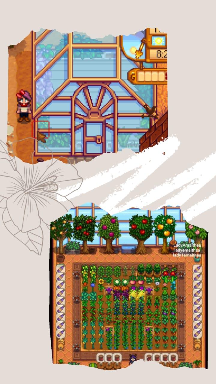 Membangun Rumah Kaca ( Greenhouse)
