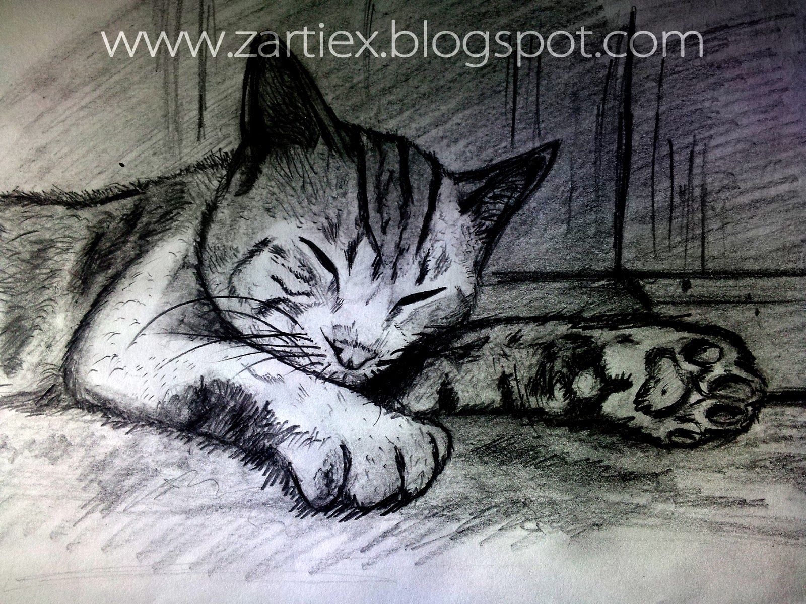 Dibujos de animales realistas - Dibujos de gatos - Zartiex