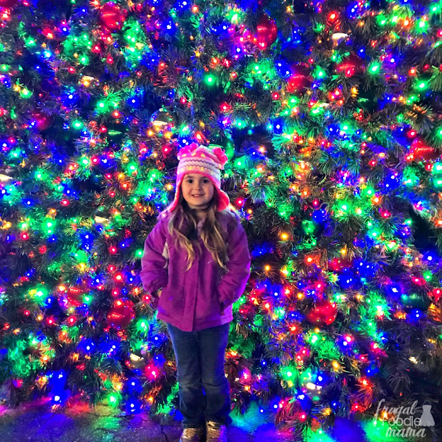 Want to see what close to 2 million dazzling Christmas lights looks like in person? Then you definitely need to plan to go see the Holiday Lights at Kennywood Amusement Park in West Mifflin during your holiday visit to Pittsburgh!