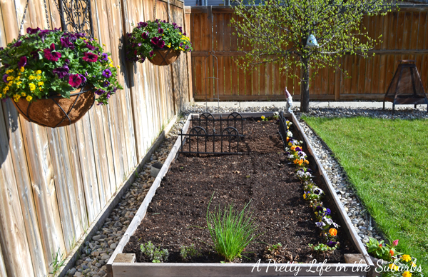 Vegetable Gardening in Raised Beds & Containers