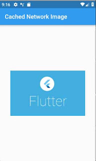 Flutter image cache library