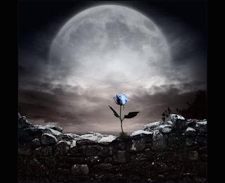 Flor azul ao luar em ambiente escuro e pedregoso. O estrito sentido bíblico do vocábulo morte no Antigo e Novo Testamentos.