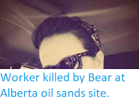 http://sciencythoughts.blogspot.com/2014/05/worker-killed-by-bear-at-alberta-oil.html