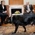 Merkel-Putin diyaloğunun NATO-Rusya ilişkilerinde önemi - CFR