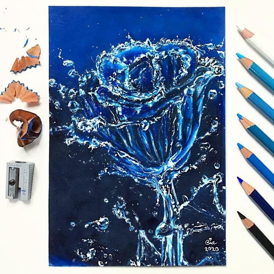 05-Water-rose-Cia-www-designstack-co