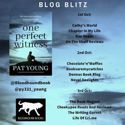One Perfect Witness by Pat Young @py321_young #BlogBlitz @Bloodhoundbook #Review