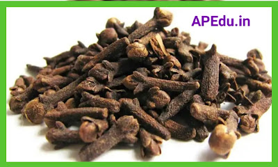 Health Benefits of Cloves: Eating Cloves .. All These Illnesses Can Be Cured