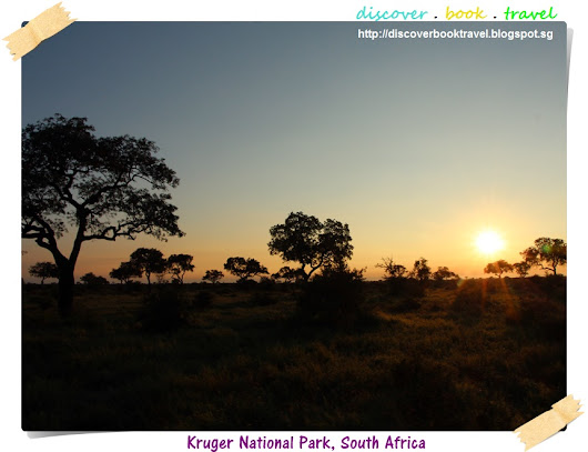 Kruger National Park Safari Day 4