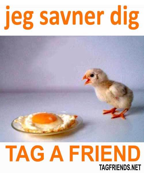 How To Say I Miss You In DANISH