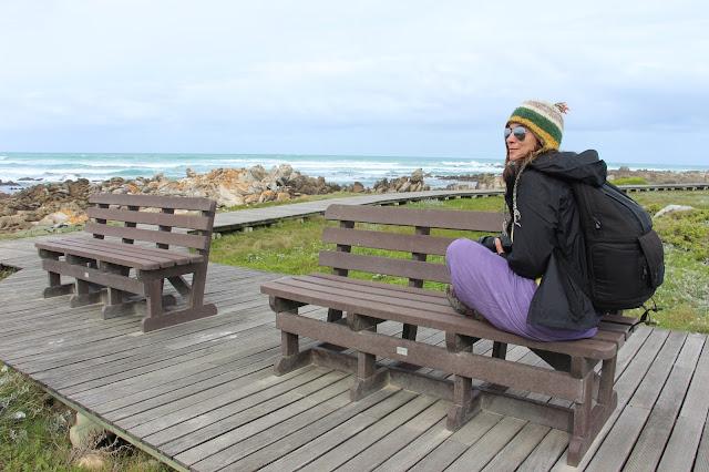 DICAS de viagem para VISITAR HERMANUS e ver baleias e mergulhar com tubarões | África do Sul