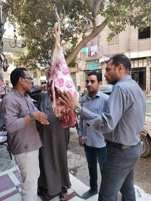 إعدام لحوم مجمده وأسماك غير صالحة للإستهلاك الآدمى بحملة فى سوهاج
