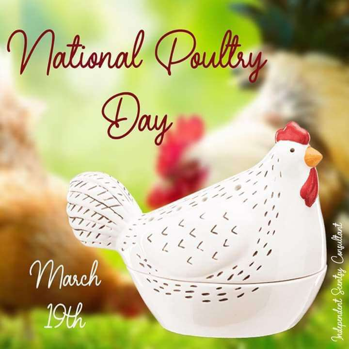 National Poultry Day Wishes