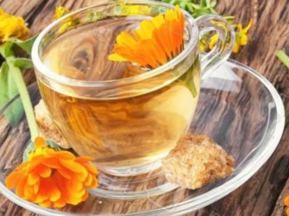 Catusa, beneficiile unei plante cu miros si gust neplacut