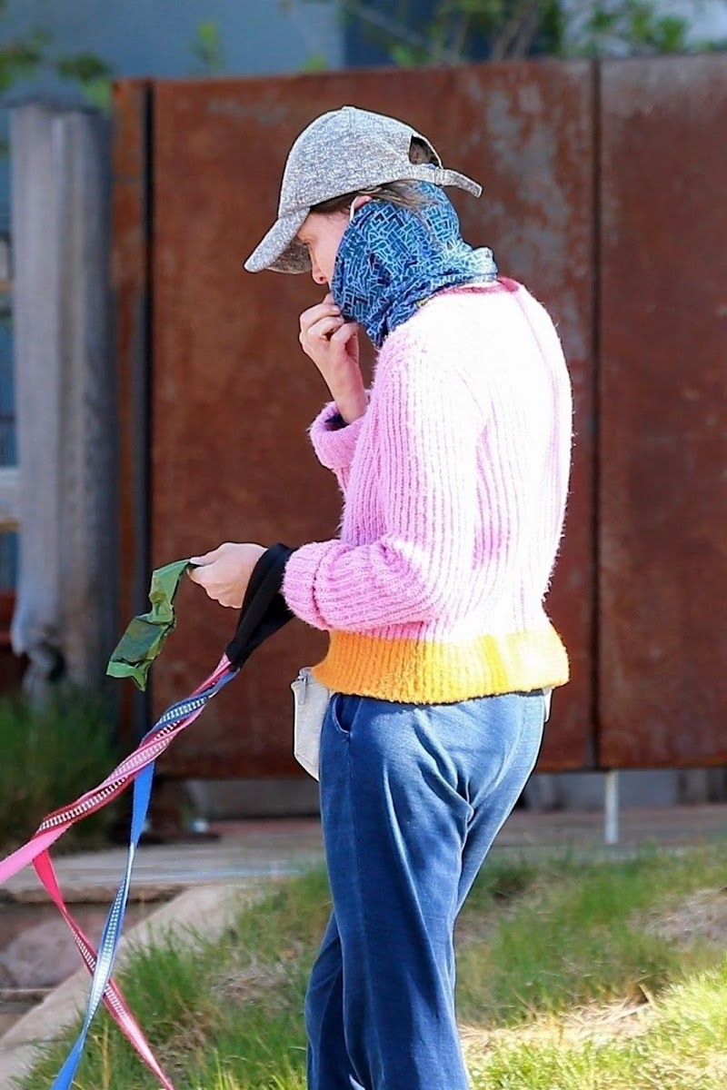 Calista Flockhart  Wearing Bandana Mask Out with Her Dogs in Los Angeles 13 Apr-2020