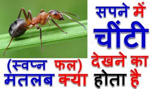 सपने में चींटियां देखना