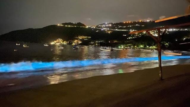 Acapulco sorprende con bioluminiscencia