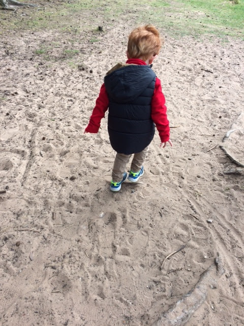 Little boy walking on a sandy path
