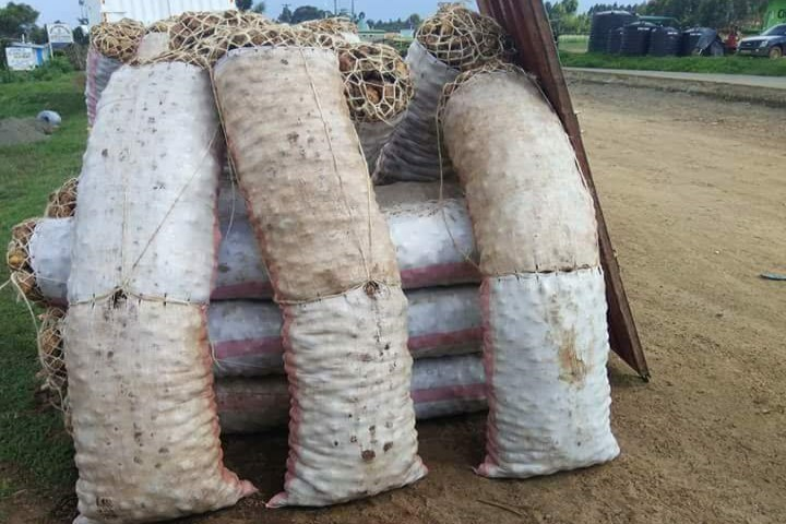 The culture of using sacks, wooden crates, and containers as a measure of weight for farm produce