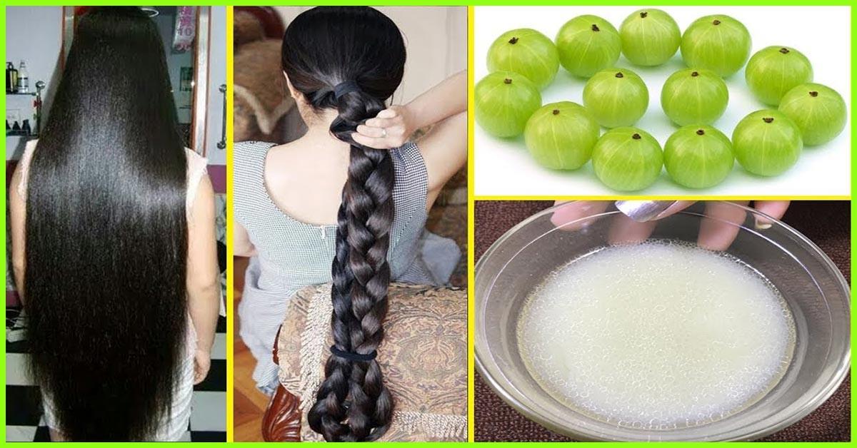 यहां पर मेथी के बीज के 5 घरेलू उपचार दिए गए हैं जो आपके बालों को झड़ने और बढ़ने में भी मदद करेंगे।