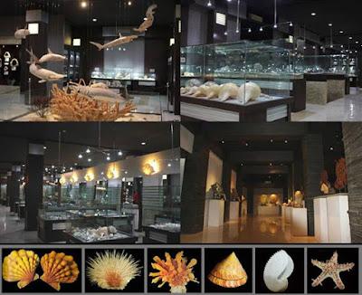 akcayatour, Bali Shell Museum, Travel Malang Bali, Travel Bali Malang, Wisata Bali