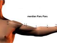 TITIK PENTING MEREDIAN PARU PARU