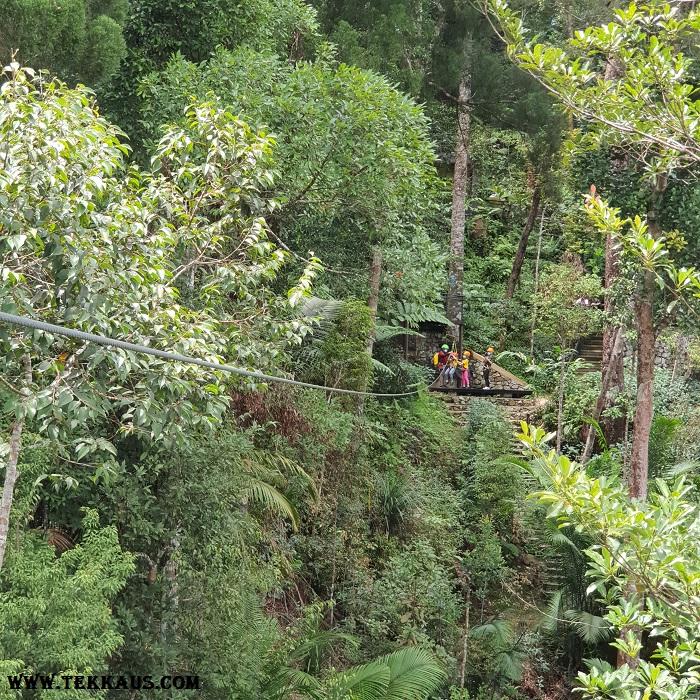 Penang Zipline Activity In The Jungle