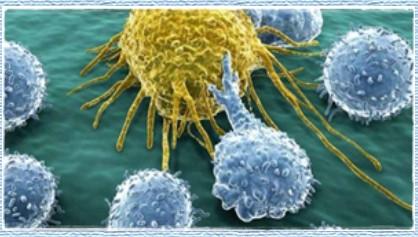 Obat Kanker Terbaik di Dunia