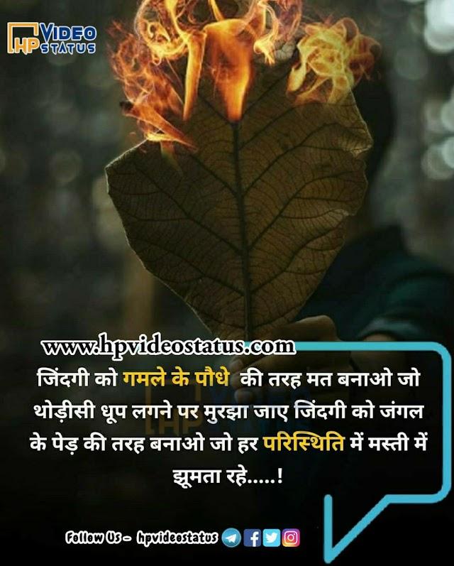 जिंदगी को गमले | Good Morning Wishes In Hindi | Good Morning Status Quotes
