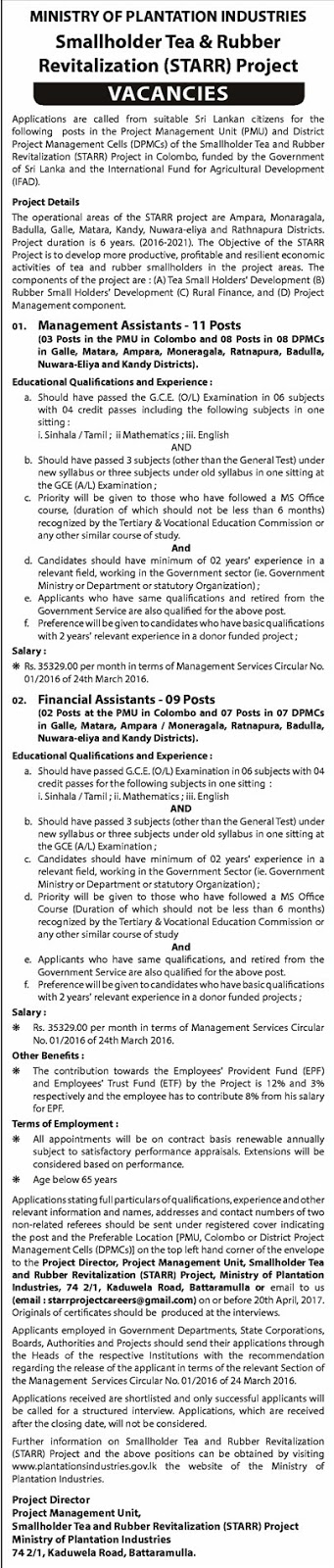 Sri Lankan Government Job Vacancies at Ministry of Plantation Industries for Management Assistant, Financial Assistant