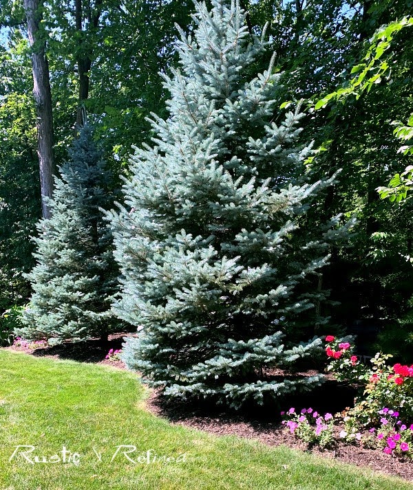 Lake County Indiana Master Gardener Garden Walk - House 4 Tour of gorgeous annuals, perennials and a stunning pond!