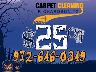 http://txrichardsoncarpetcleaning.com/
