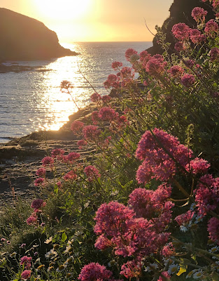 Sunset over the sea at Port Gaverne