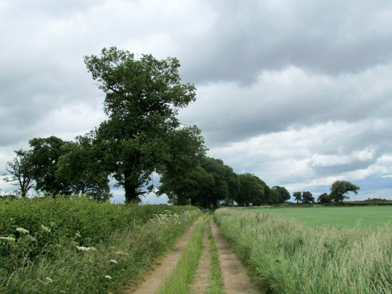 Image of Walk 18: Tylers Causeway Loop by Hertfordshire Walker released under Creative Commons