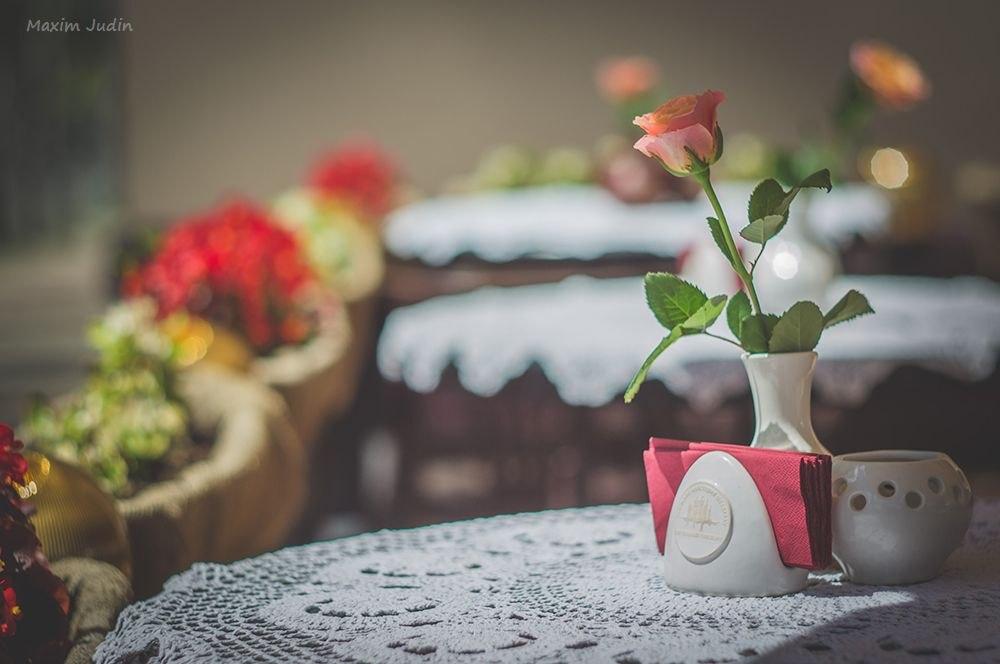 роза на столе красиво
