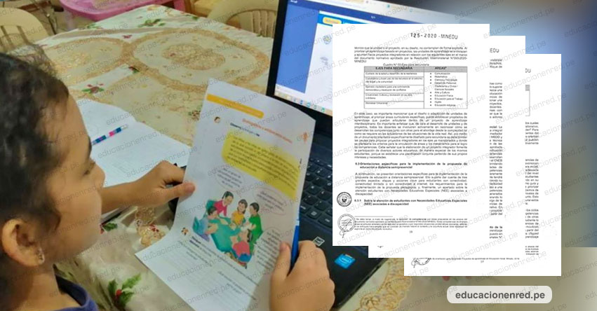 MINEDU explica en qué consiste la estrategia de educación a distancia semipresencial (R. VM. N° 125-2020-MINEDU)