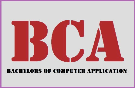 What is a BCA? What will I Realize in a BCA Course?